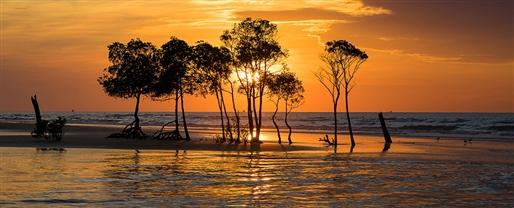 Komodo & the Australian Coast with Viking